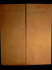 Tonewood archtop 009 back&ribs 2004 A €80,--