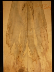 e-guit 13a  spalted maple droptop thickness 8mms € 40,--