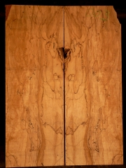 e-guit003 spalted maple droptop €30,--
