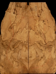e-guit008  spalted maple droptop €30,--
