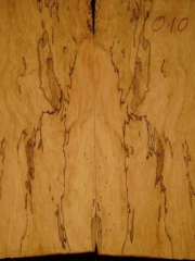 e-guit 010  spalted maple droptop thickness 8mms € 40,--