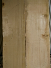 bass 23 spruce top 2010 € 300,-- sold