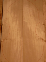 spruce top  036   2012    EURO 180,--