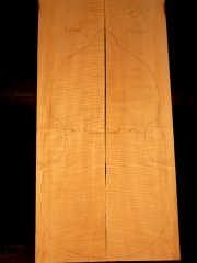 Tonewood viola da gamba 001 2001 back&ribs €250,--