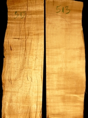 513aTonewood - Viola - split bridge wood 2008  €60,--