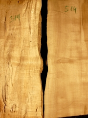 514aTonewood - Viola - split bridge wood 2008 €60,--