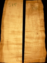 515aTonewood - Viola - split bridge wood 2008  €60,--
