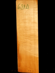 Tonewood - Viola - 681a 2011 € 40,--reserved